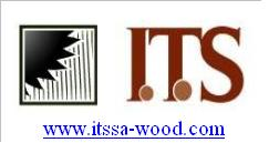 Director Forestal - Experto Forestal de Madera - ITS WOOD SA