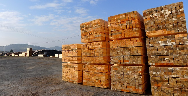 France: softwood market facing difficulties